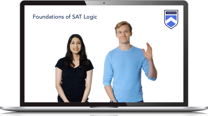 Foundations of SAT Logic