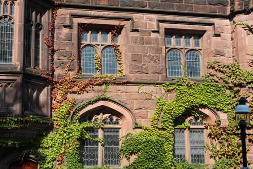 Ivy-League College building