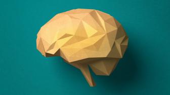 Inside the Brain Class