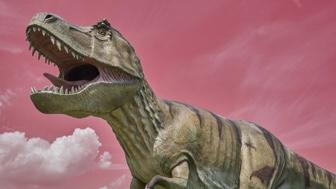 Jurassic Class: All About Dinosaurs Class