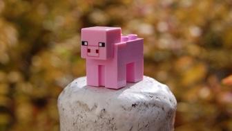 Minecraft: Create Your Own Worlds