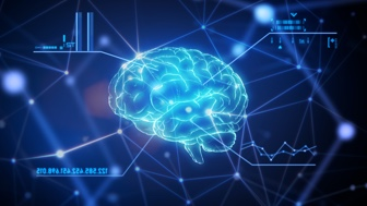 Human Anatomy: The Brain